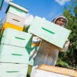 Beekeeper Carrying Honeycomb Crate — Stok fotoğraf