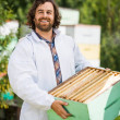 Confident Beekeeper Carrying Honeycomb Crate — Stock Photo #35790577