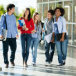 Stock Photo: Cheerful Students Walking On Campus
