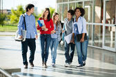 Cheerful Students Walking On Campus — Stock Photo