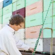 Beekeeper Tying Rope To Honeycomb Crates Loaded On Truck — Foto Stock