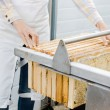 Female Beekeeper Collecting Honeycombs From Machine — Foto de Stock