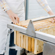Stock Photo: Female Beekeeper Collecting Honeycombs From Machine