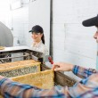 Beekeeper With Colleague Working In Beekeeping Factory — Stock Photo
