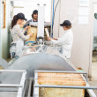 Beekeepers Extracting Honey From Machine In Factory — Stock Photo