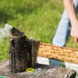 Bee Smoker With Apiarist Working On Farm — Stock Photo #36046485