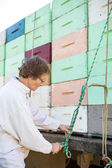Beekeeper Tying Rope To Honeycomb Crates Loaded On Truck — Stock Photo