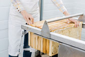 Female Beekeeper Collecting Honeycombs From Machine — Stock Photo