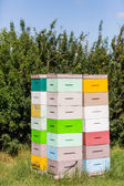 Stacks Of Honeycomb Crates — Stock Photo