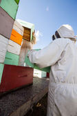 Beekeepers Unloading Honeycomb Crates — Stock Photo