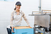 Female Beekeeper With Honeycomb Box At Factory — Stock Photo
