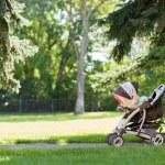 Baby Stroller In Park — Stock Photo