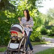 Woman With Baby Carriage Using Cell Phone In Park — Stock Photo #36316559