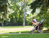 Baby Stroller In Park — Stock Photo