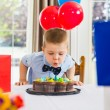 Boy Blowing Candles On Cake — Stock Photo #37422223