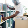 Librarian Arranging Books In Library — Foto Stock