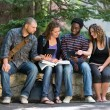 University Students Using Digital Tablet On Campus — Stock Photo #39294519