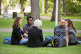 Multiethnic Friends Relaxing On Grass At Campus — Stock Photo