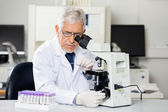 Researcher Examining Microscope Slide In Lab — Stock Photo
