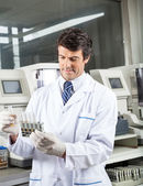 Technician Analyzing Urine Samples In Laboratory — Stock Photo