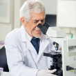 Smiling Scientist Using Microscope In Laboratory — Stock Photo #40349615