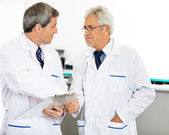 Researchers Shaking Hands — Stock Photo