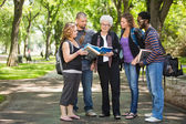 Students Discussing Notes On Campus Road — Stock Photo