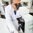 Male Researcher Using Microscope In Lab — Stock Photo #40842005