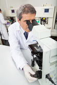 Pesquisador masculino usando microscópio no laboratório — Fotografia Stock