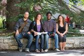 Portrait Of University Students Sitting On Campus — Foto Stock