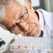 Researcher Analyzing Microtiter Plate — Stock Photo #41252811