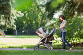 Mother Pushing Stroller In The Park — Stock Photo
