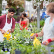 Working at greenhouse — Stock Photo #6992653