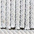 Stock Photo: Rope - background