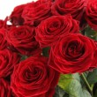 bouquet di rose rosse — Foto Stock