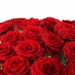 Bouquet of red roses — Stock Photo #18902183