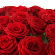 Bouquet of red roses — Stock Photo #18902245