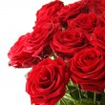 buquê de rosas vermelhas — Foto Stock