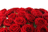 Bouquet of red roses — Photo