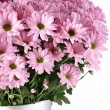 Bouquet of Chrysanthemums — Stock Photo #20133553