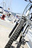 Bisiklet tekerleği portre — Stok fotoğraf