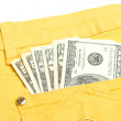 Money in the pocket — Stock Photo #2710039