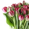 Tulips Bouquet — Foto de Stock