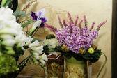 Květiny v interiéru — Stock fotografie
