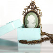 Stock Photo: Pendant in a box