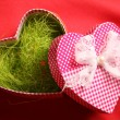 Valentine's Day — Foto Stock