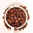 Cup of coffee beans — Stock Photo #31129201
