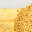 Hay Bale Scenery — Stock Photo