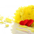 Yellow chrysanthemums with two red hearts — Stock Photo #5533480