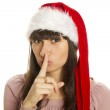 Santa Portrait — Stock Photo #7176514